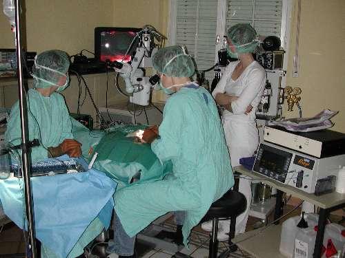 Foto Operation (4)